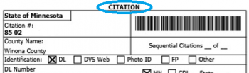 State Citation Example